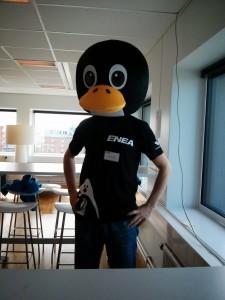 Daniel Stenberg, a penguin