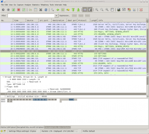 wireshark-screenshot